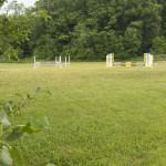 Outdoor grass ring