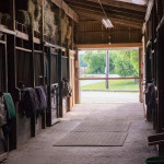 Barn Aisle to Outdoor Ring