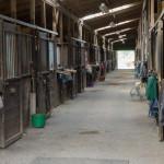 Barn aisle one