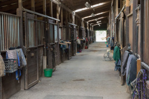 Barn aisle one