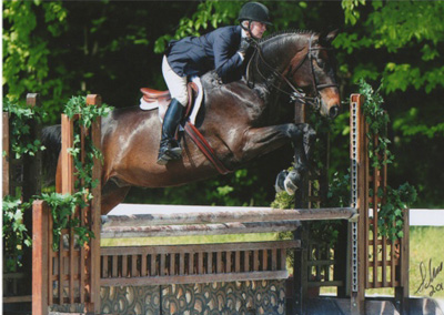 Golden Humphrey – Sale [Hunter/Equitation]